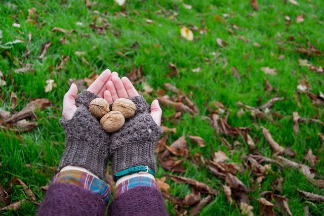 Walnut, hat and gloves crochet pattern - schema uncinetto per guanti e cappello